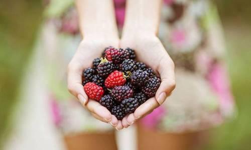 cabelo-dieta-alimentos-brilho-resistencia-frutas-vermelhas-70197