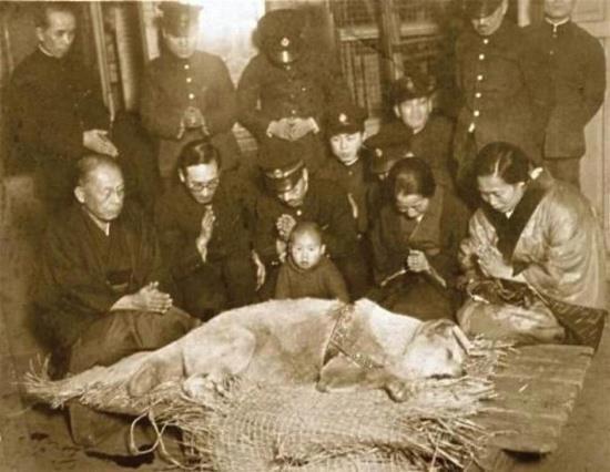 A última fotografia de Hachiko, no seu velório. Na foto está a familia do professor Ueno. - Imagem da internet.